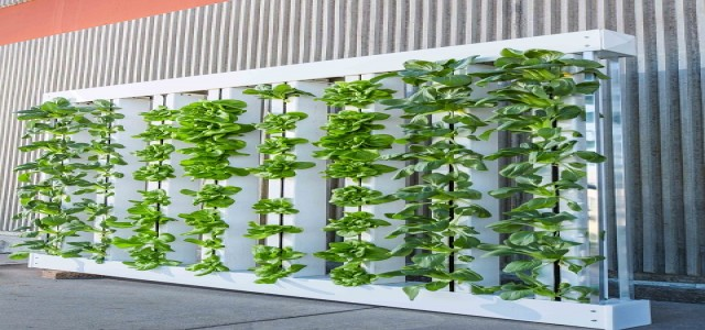 North America Vertical Farming Market by Product, Technology, Application, Regional Outlook & Forecast by 2024