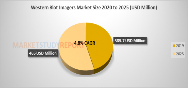 At 4.8% CAGR, Western Blot imagers Market Size, Share Set to Register 465 million USD by 2025